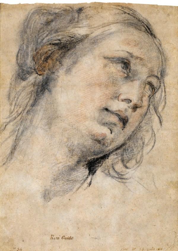 Drawn portrait master Pin  Antwerp) on (Siegen