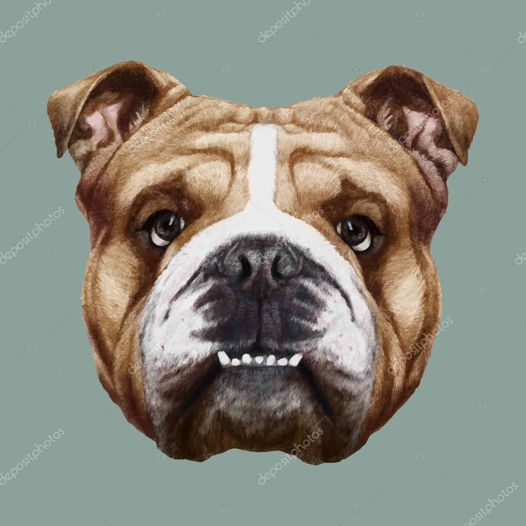 Drawn portrait old english Victoria_Novak Portrait drawn portrait Bulldog