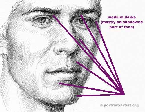 Drawn portrait shaded face Shading Medium drawing face explained: