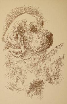 Drawn portrait word By entirely  Rottweiler: Stephen