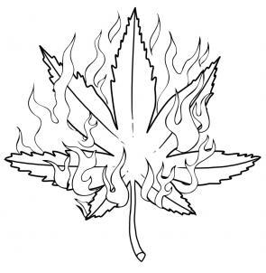 Drawn pot plant Leaf Pop step a How