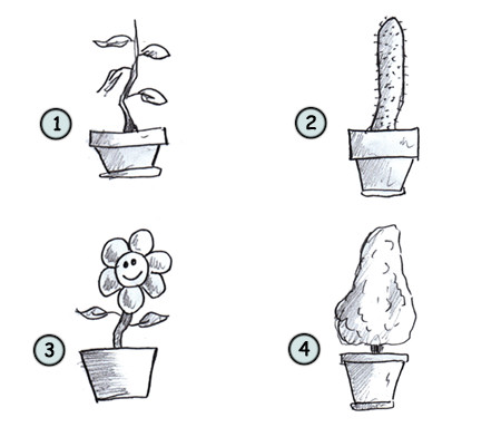 Drawn pot plant animated Plants to How 4 to