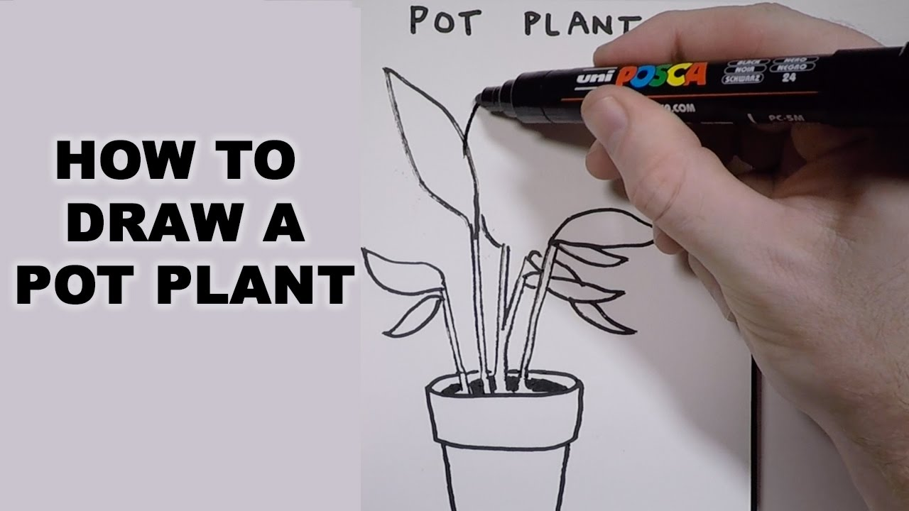 Drawn pot plant character Pot YouTube to a How