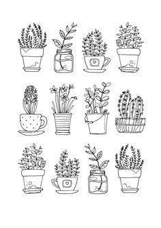 Drawn pot plant creative 01 DrawingDoodle  drawing Colour