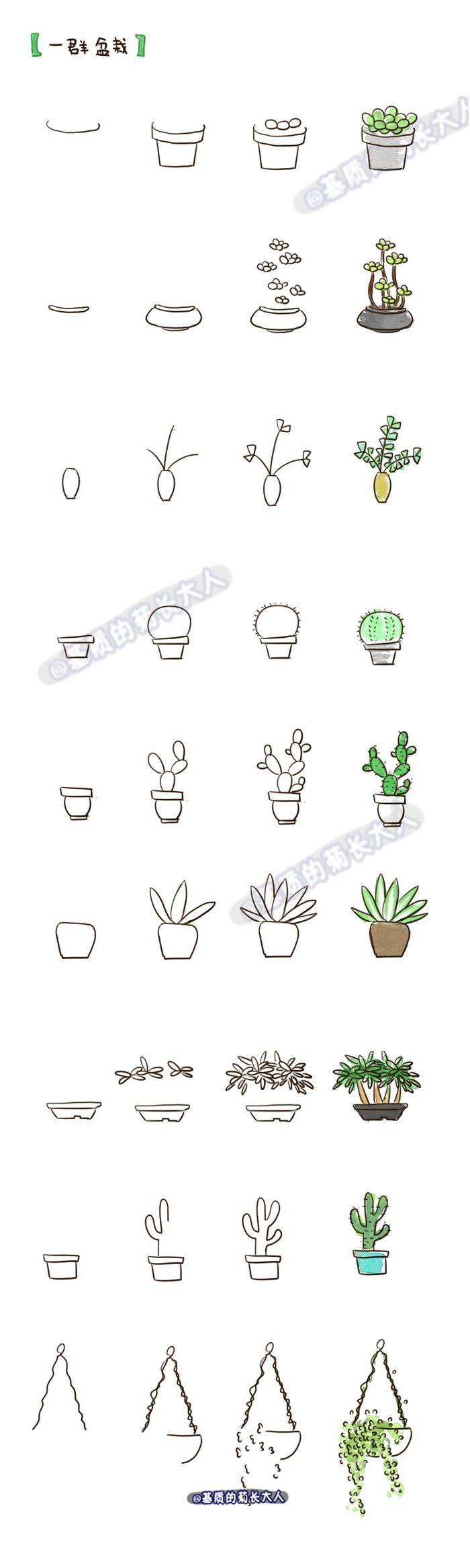 Drawn pot plant creative Of creative!  Videos Videos