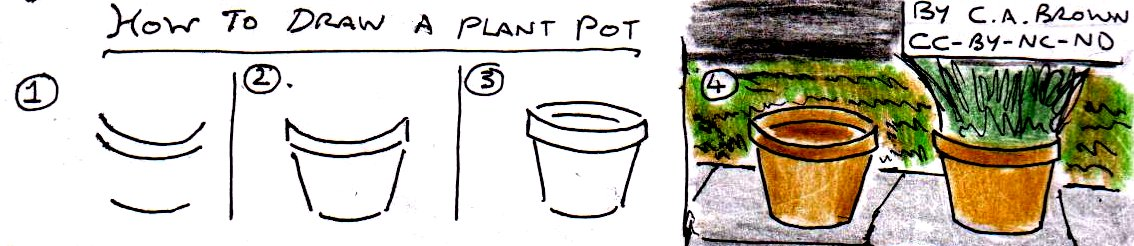 Drawn pot plant creative Draw a image « How