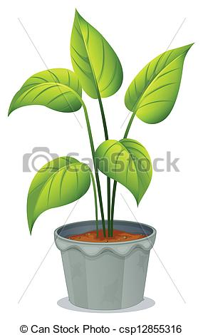 Drawn pot plant graphic A green of csp12855316 of