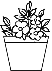 Drawn pot plant pencil drawing Step using Draw simple To