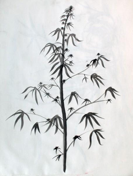 Drawn pot plant pencil drawing Pencil Pot images Design Pencil