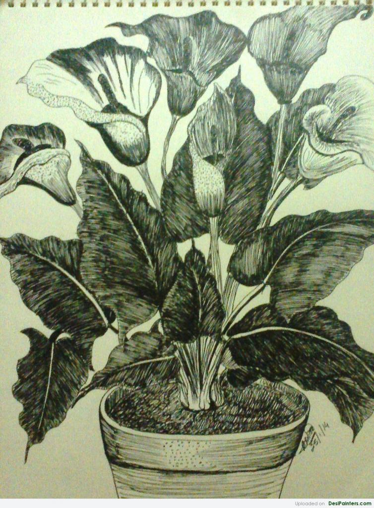 Drawn pot plant pencil drawing A Plant Vase To Pencil