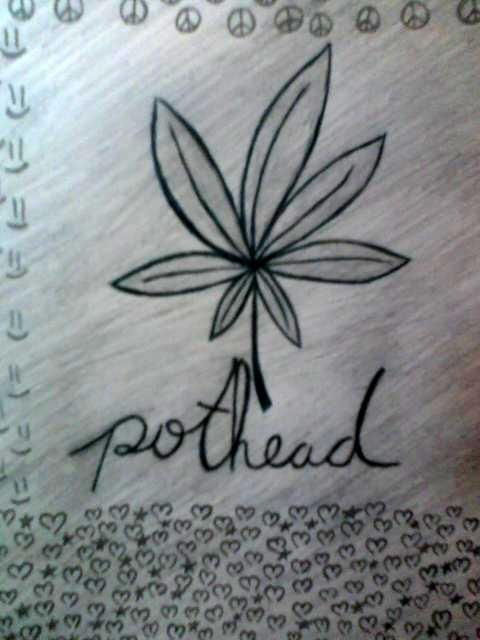 Drawn pot plant pothead • Pinterest of catalog world's
