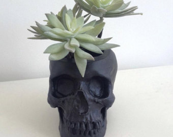 Drawn pot plant skull Skull planter Tidy Desk Skull