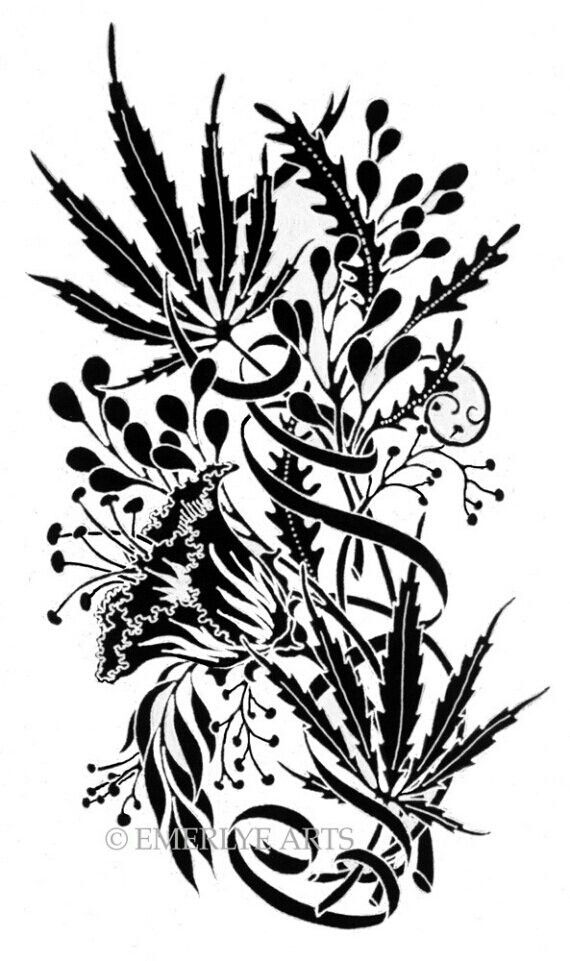 Drawn pot plant stoned STONED 53 more on on