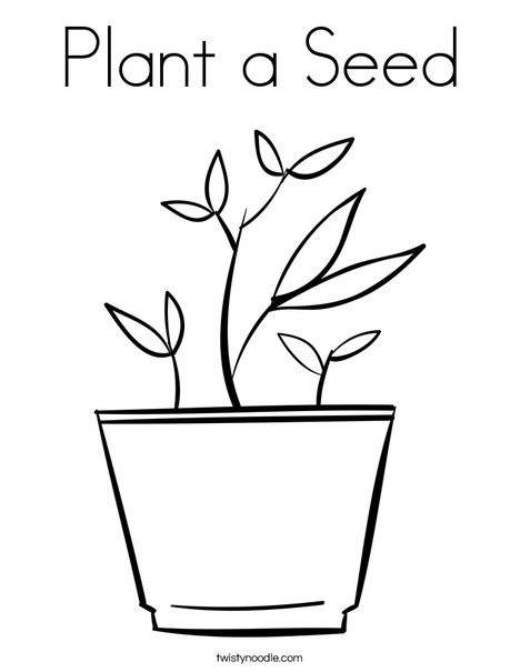 Drawn pot plant the word Pages twisty a template seed
