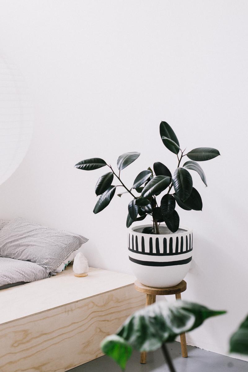 Drawn pot plant tribal — Product mali List Solta