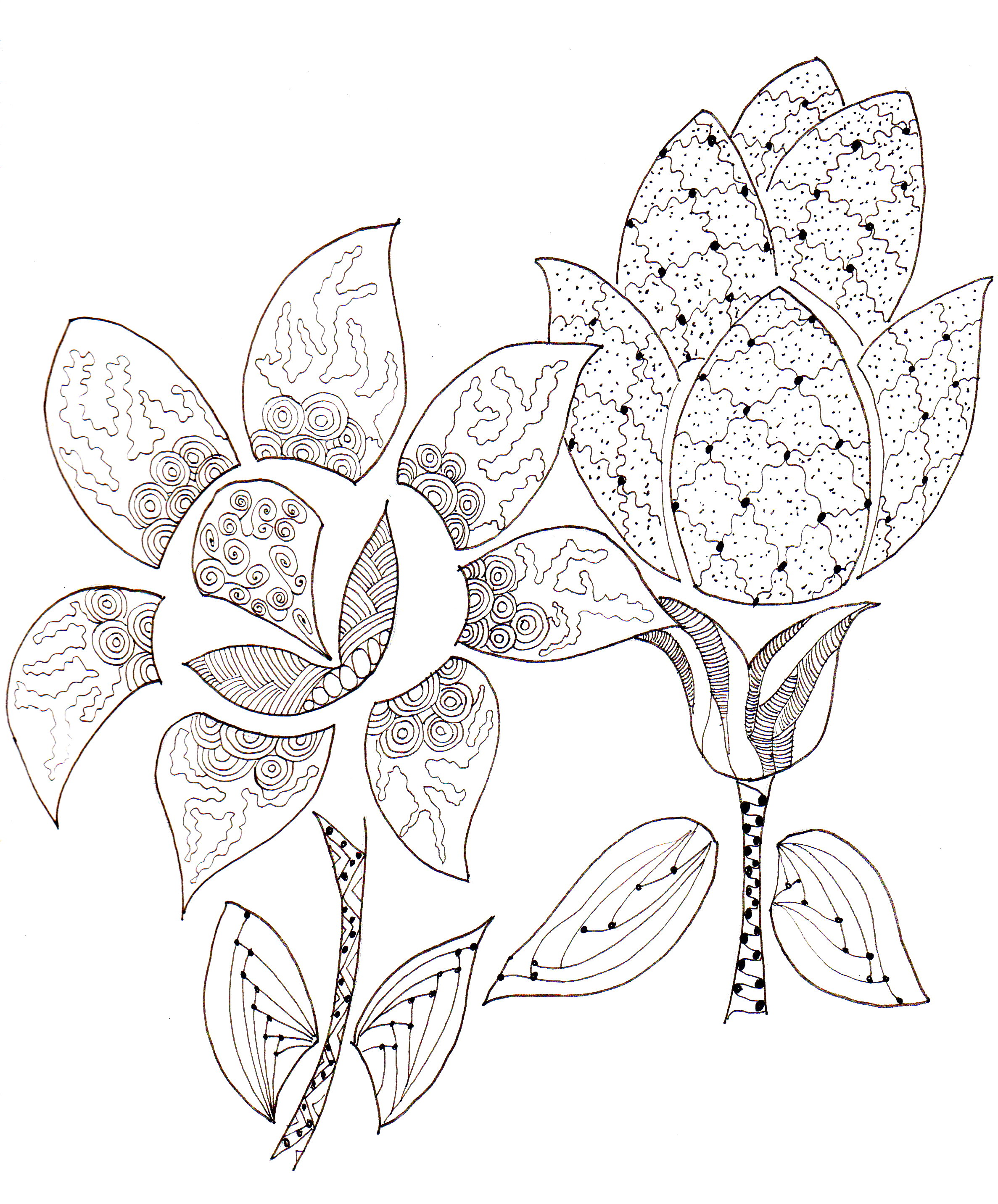 Drawn pot plant zentangle Struggling while a of zentangle