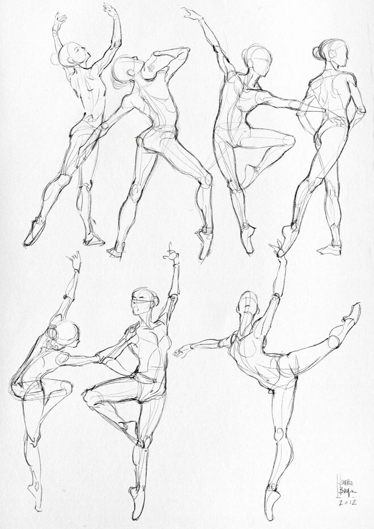 Drawn ballerine modern dancer Best Human Dance Study: Body