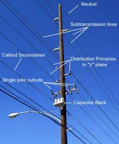 Drawn power line electrical pole LineNetwork found of with a