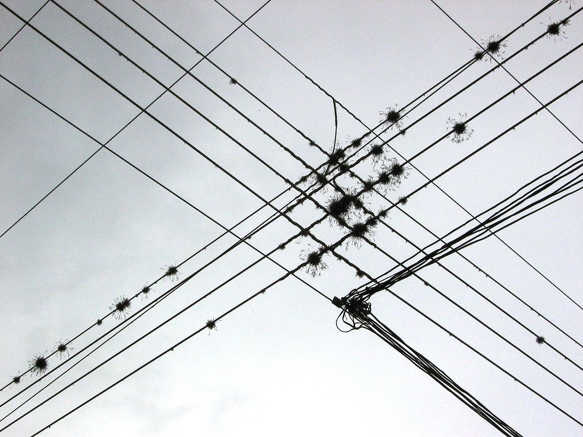 Drawn power line large Wikipedia  Wire