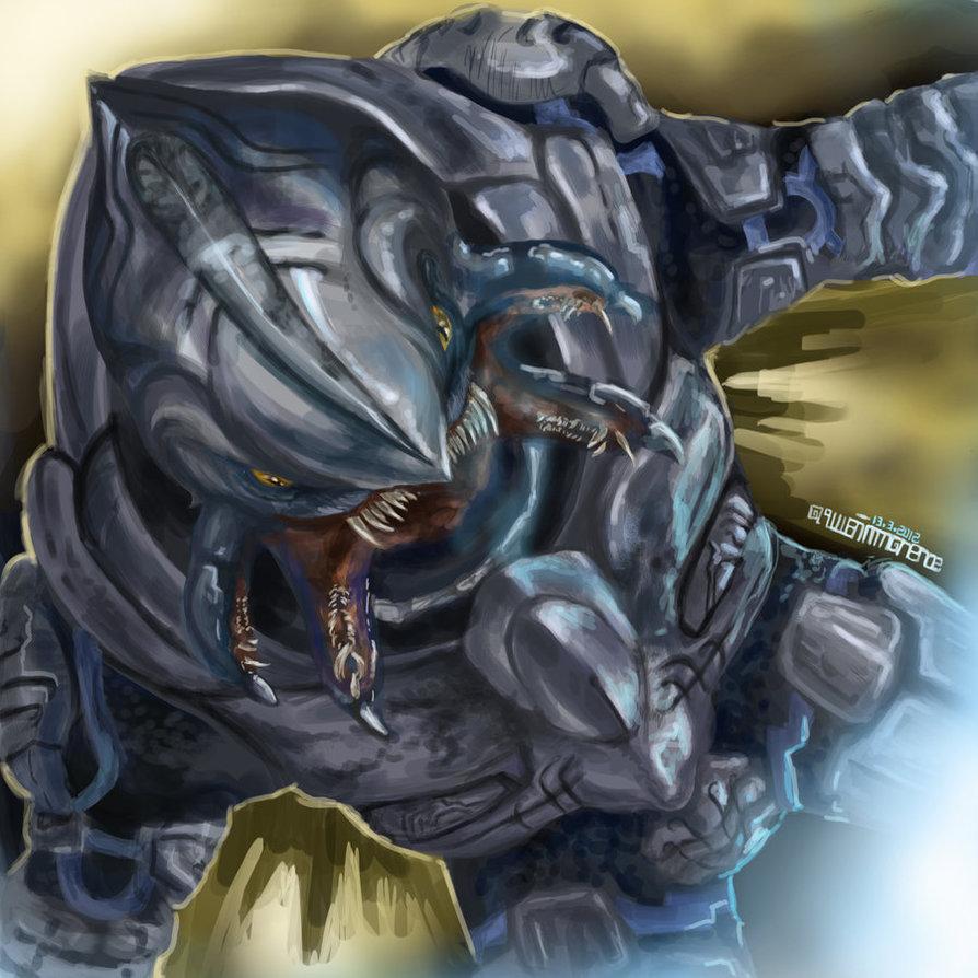 Drawn predator arbiter Arbiter: AQuietImmanence on DeviantArt The