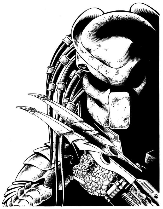 Drawn predator art Predator on Predator art best