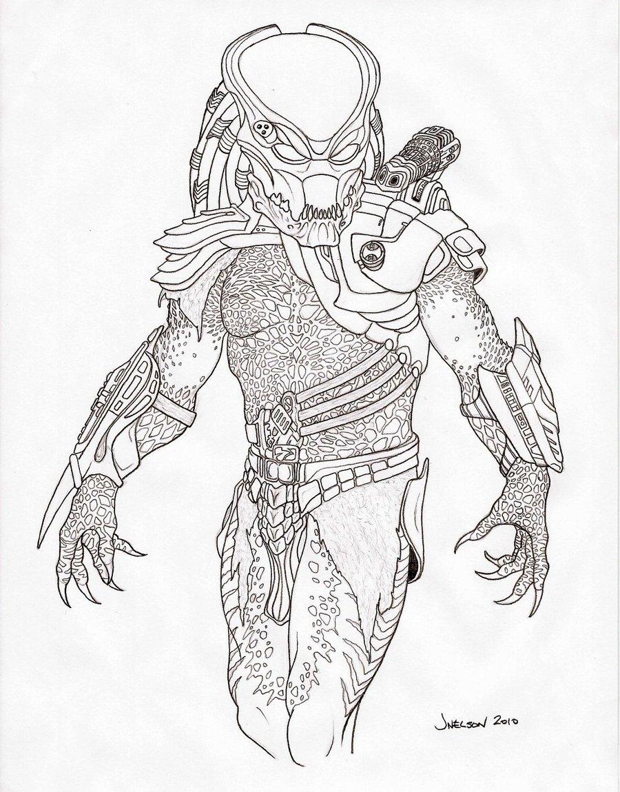 Drawn predator berserker 02 PredatrHuntr  DeviantArt PREDATORS
