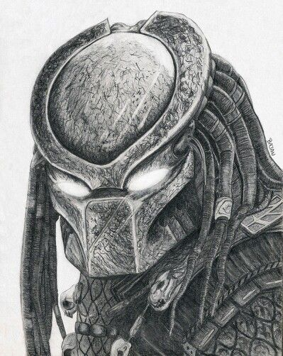 Drawn predator classic  best Aliens Pinterest about