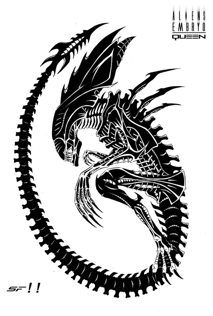Drawn predator creepy alien On Pin more Find this