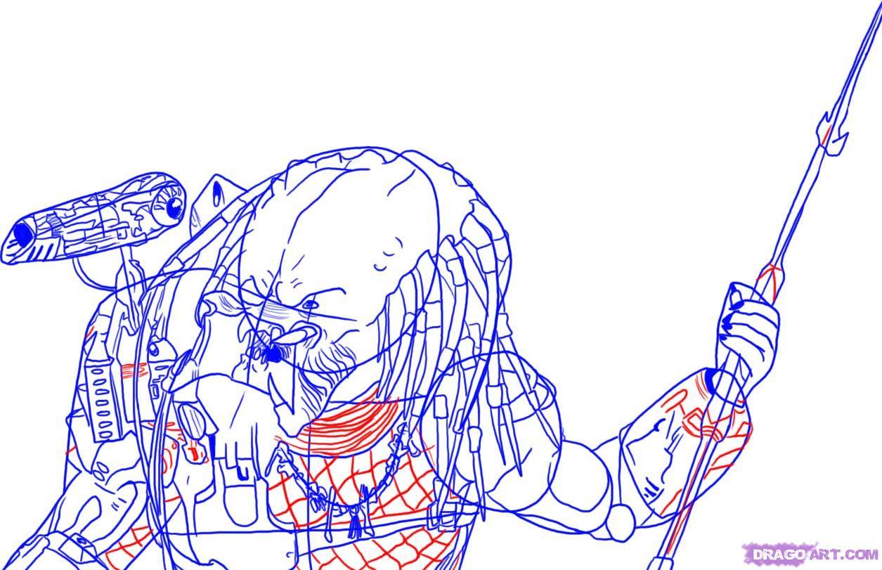 Drawn predator easy Draw  how Step FREE
