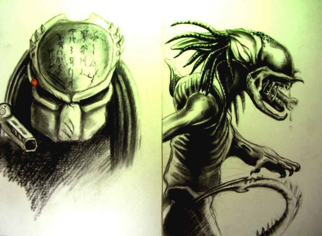 Drawn predator predalien By predator predator of vs