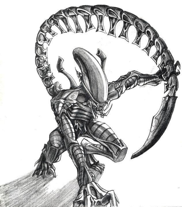 Drawn predator predalien Youbesonicimtails chrisbeaver DeviantArt Predalien Predalien