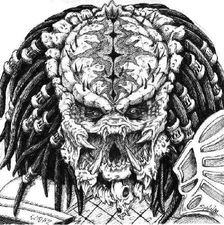 Drawn predator predator 2 Stupidman2 on predator predator by