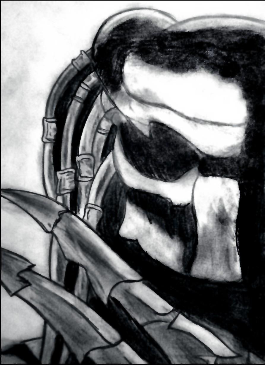 Drawn predator scar Drawing Predator Predator Scar ©