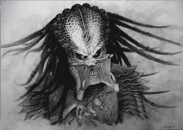 Drawn predator scar By Predator: Scar Predator: XandervanDuijvenbode
