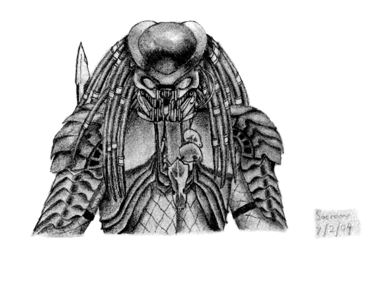 Drawn predator scar Song Predator Predator Celtic by