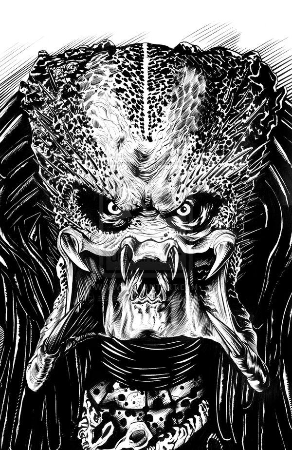 Drawn predator skull – Predator and GALLERY: and
