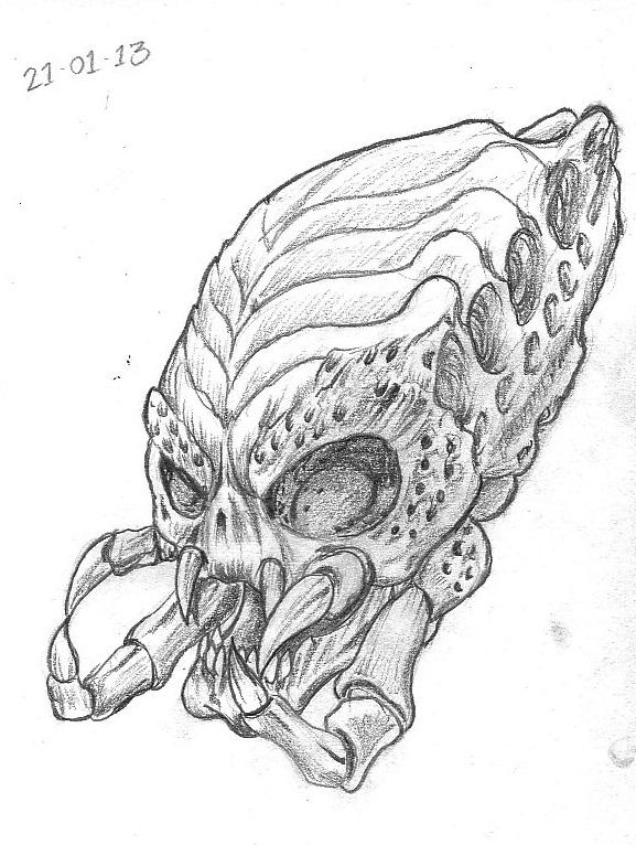 Drawn predator skull A Sketch Skulls 21st 15th