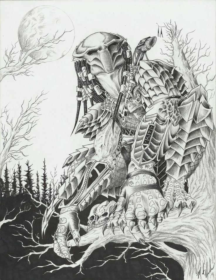 Drawn predator stormtrooper By out of Predator coloring