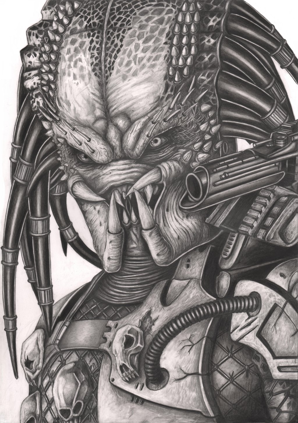 Drawn predator tracker Predator pic/pic  Best ever