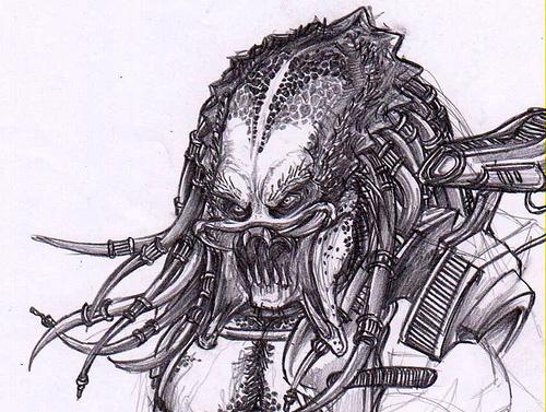 Drawn predator unmasked Predator pool AVP and Predator