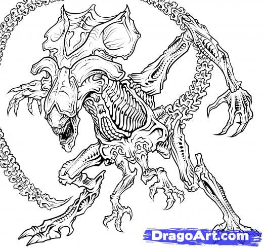 Drawn predator war the world alien How on Drawing a 811