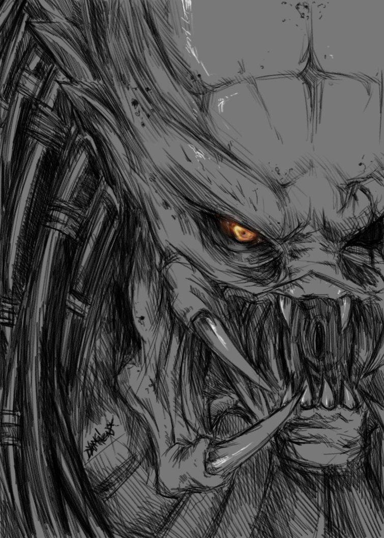 Drawn predator wolf And Yautja Predator Predator Alien