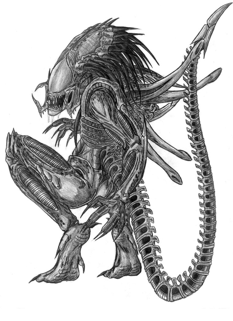 Drawn predator xenomorph Also also have the graphite