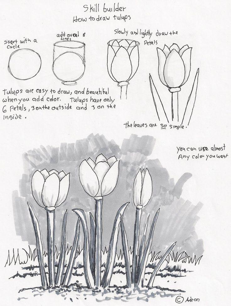 Drawn princess beginner Best Adron's Pinterest Lesson to