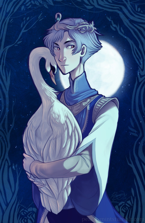 Drawn princess their prince Pinterest of Lake Prince Swan