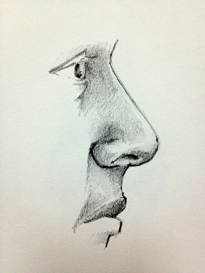 Drawn profile basic To drawing Nose Profile a