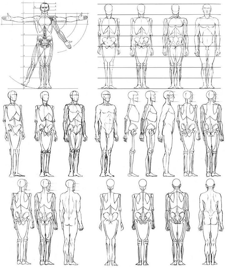 Drawn profile basic 462 Human Learn Draw Drawing