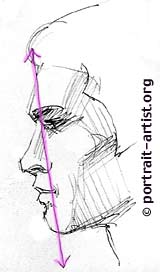 Drawn profile beginner Lesson drawing portrait  man