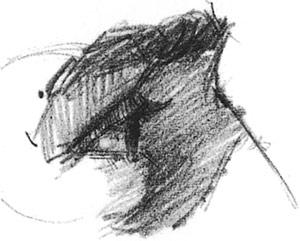 Drawn profile closed eye Nose how In bridge elliptical