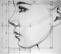 Drawn profile detailed Straight view mouth draw a